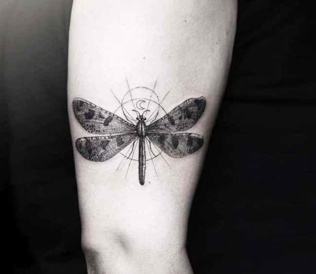 Татуировка стрекозы в дотворке