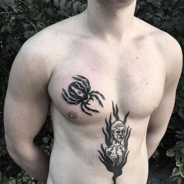Темный полосатый паук на груди