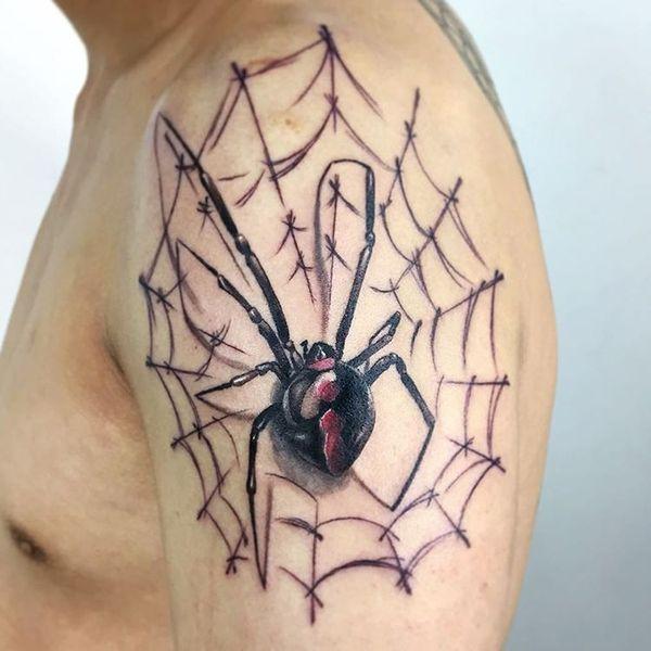 Большой реалистичный паук на паутине