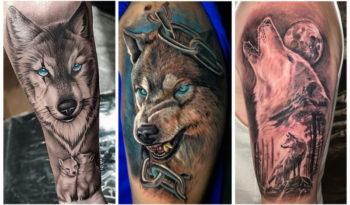 [70 Фото] Татуировки Волка - Мужские и Женские