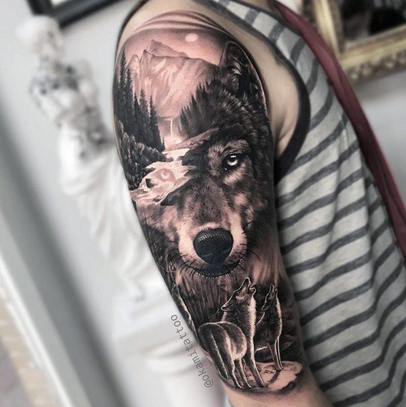 Волки в природе