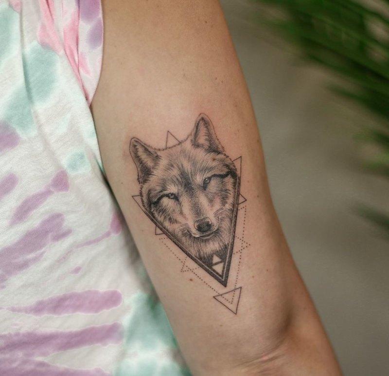 волк в треугольнике в стиле минимализм