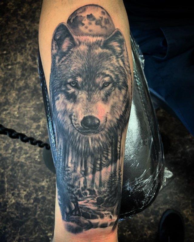 Лес, волк и полнолуние