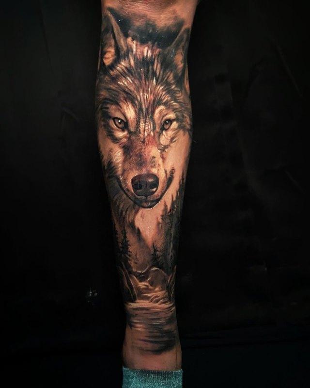 Природа и волк на ноге
