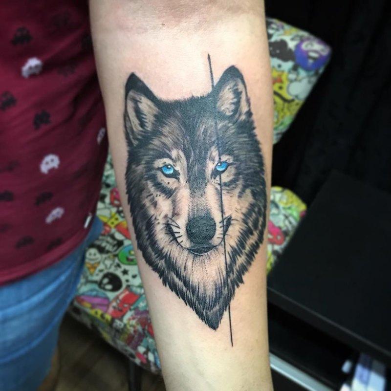 Морда волка с голубыми глазами