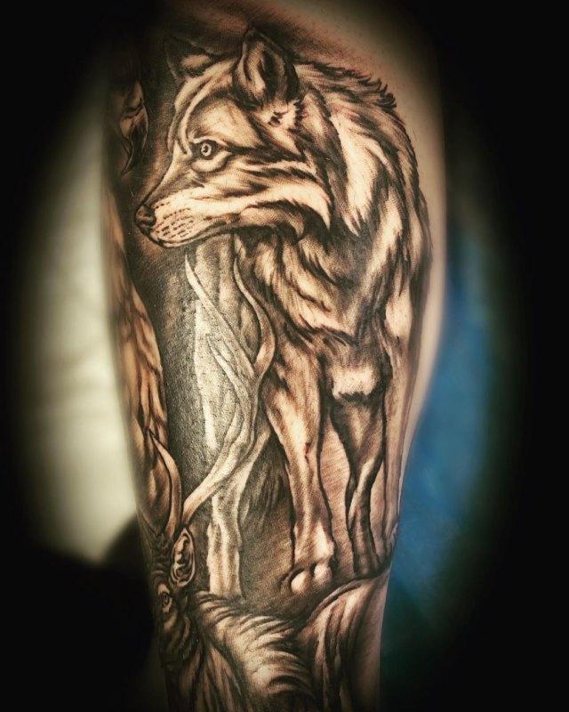 Идущий волк