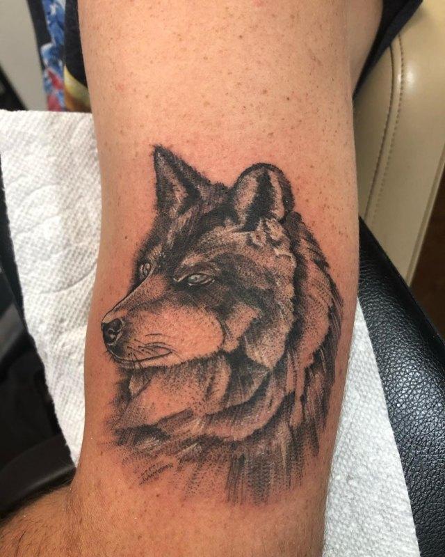Морда волка на руке