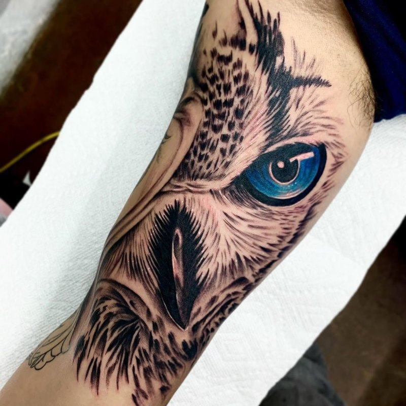 голубой глаз совы на руке
