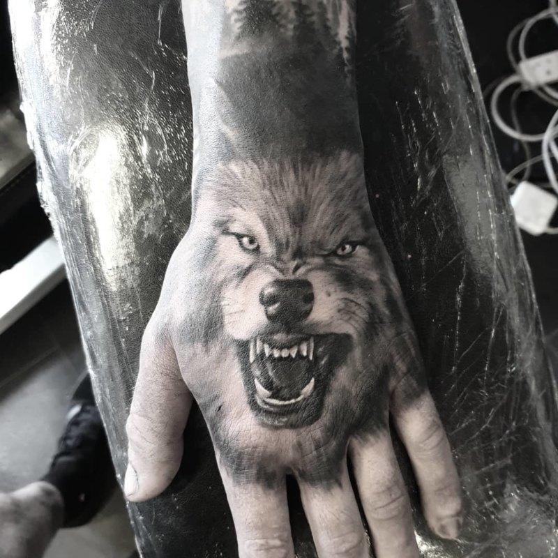 рычащий волк на кулаке