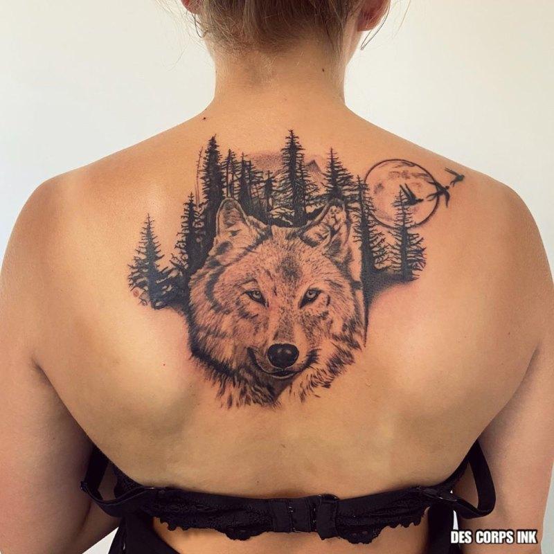 Волк в лесу на спине