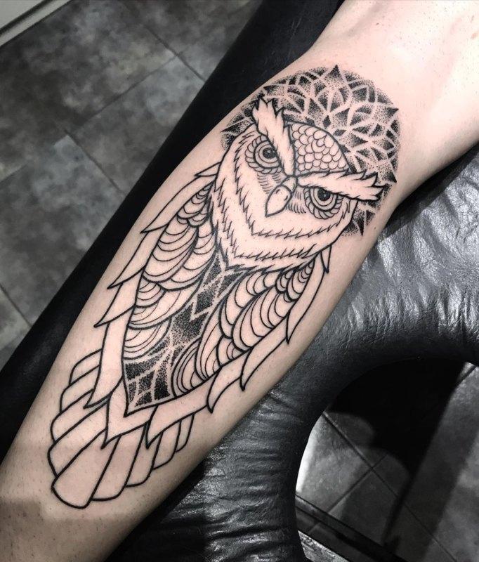 геометрическая сова