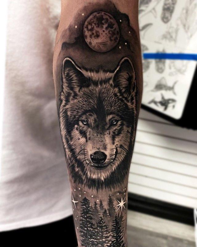 Морда волка в лесу и луной