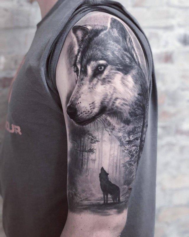 воющий волк в лесу