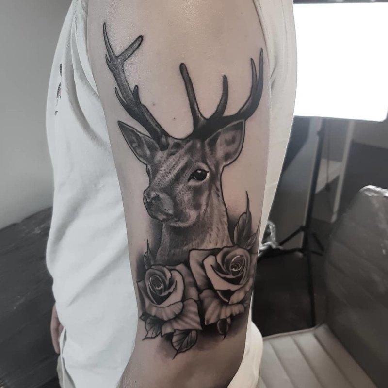 Олень с розами на плече