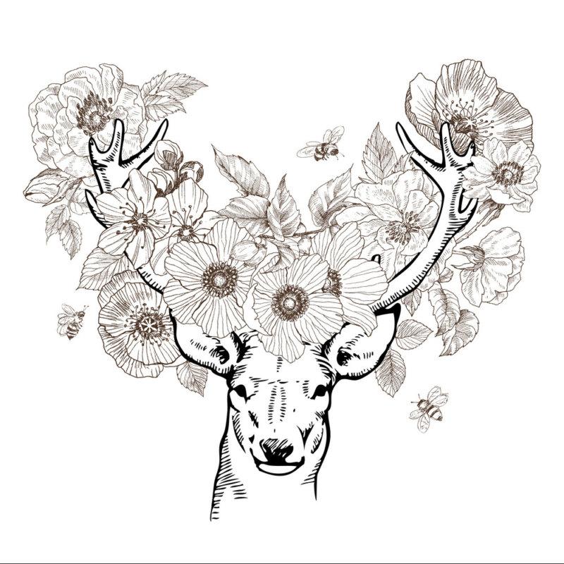 Эскиз оленя в цветах