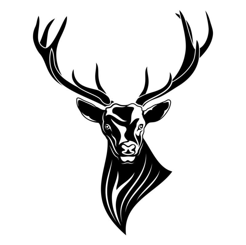 красивы черный олень эскиз