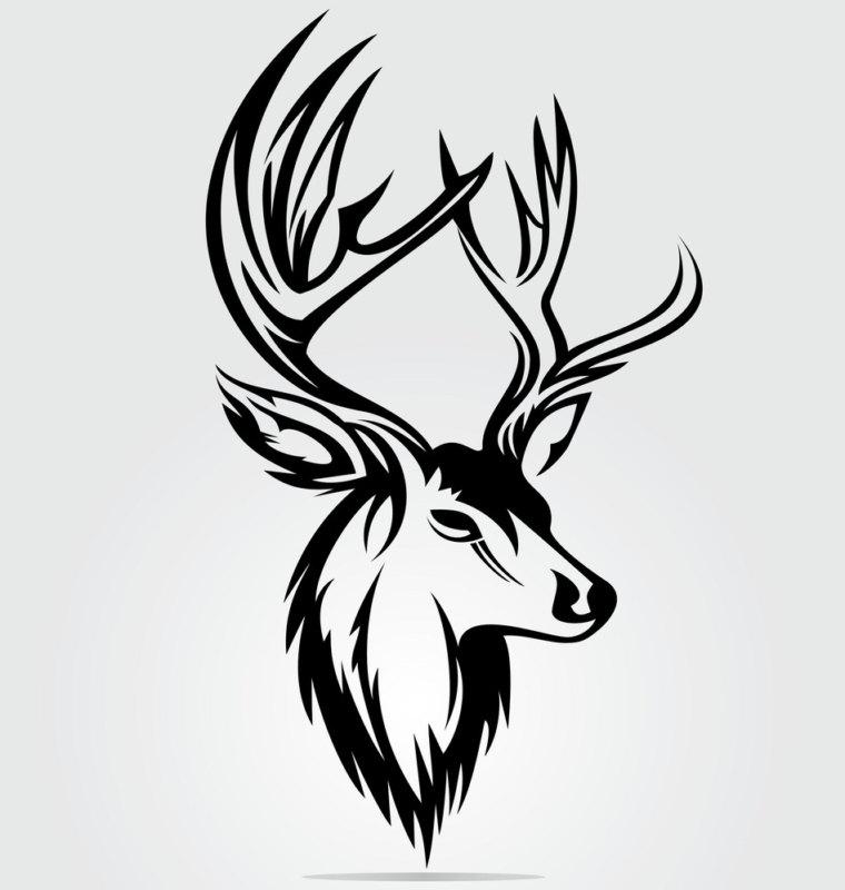 эскиз благородный черный олень
