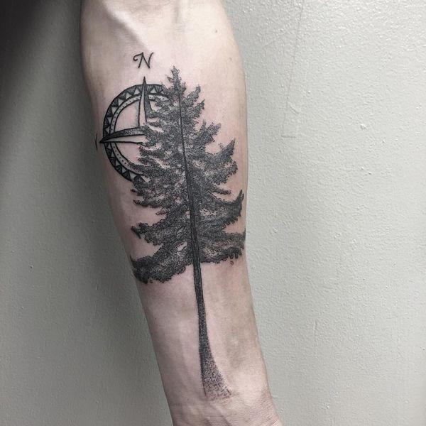 Тату вечнозеленое дерево с компасом.