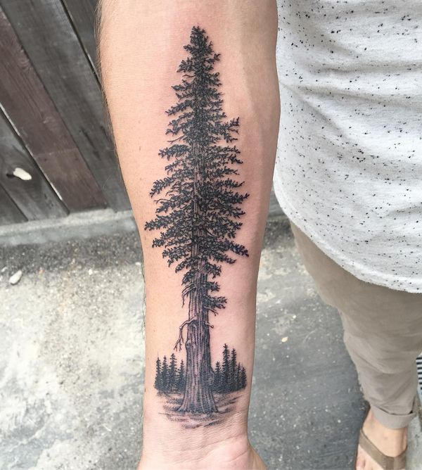 Татуировка с красным деревом на предплечье.