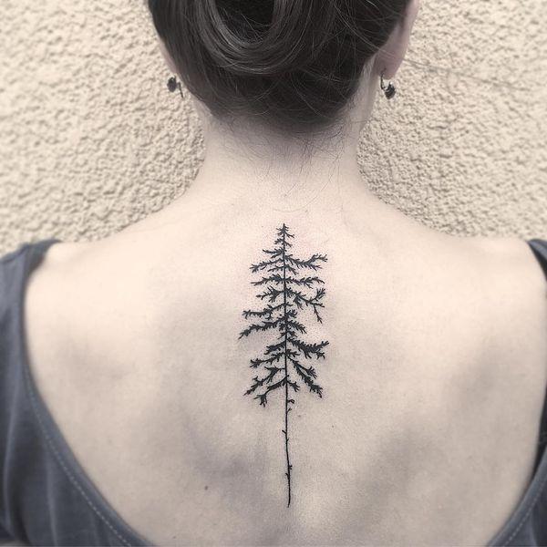 Простая татуировка осины на спине.