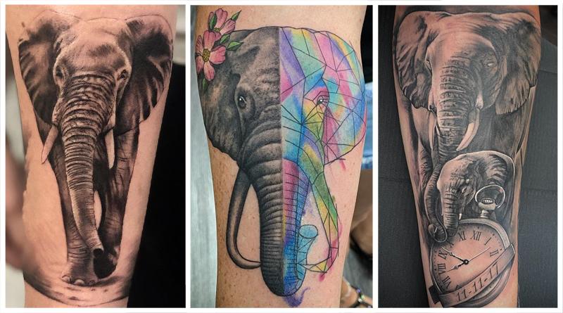 [70 Фото] Что Означает Татуировка Слон?