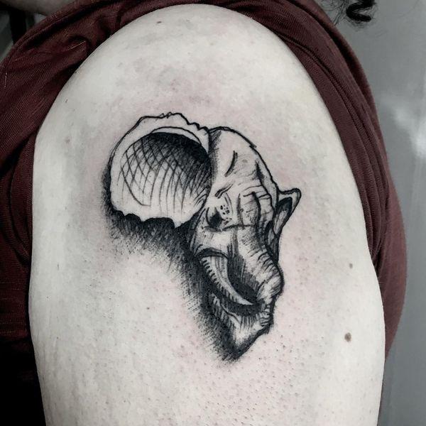 Черный эскиз тату головы слона на плече
