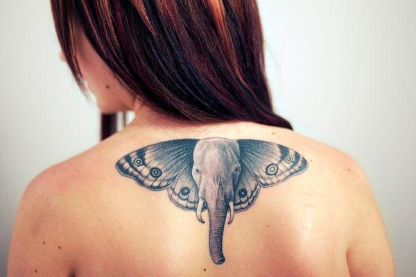 Голова слона с реалистичными татуировками в виде ушей бабочки на спине