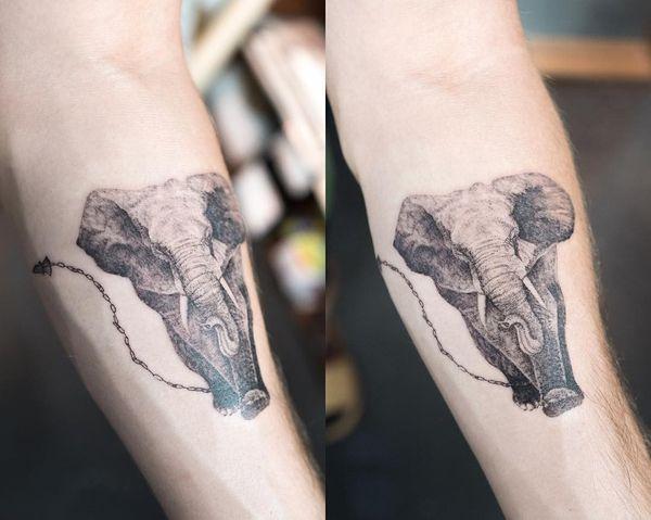 Тату слон на руке очень реалистичный