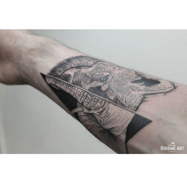 Татуировка на руке наполовину слона, наполовину волка