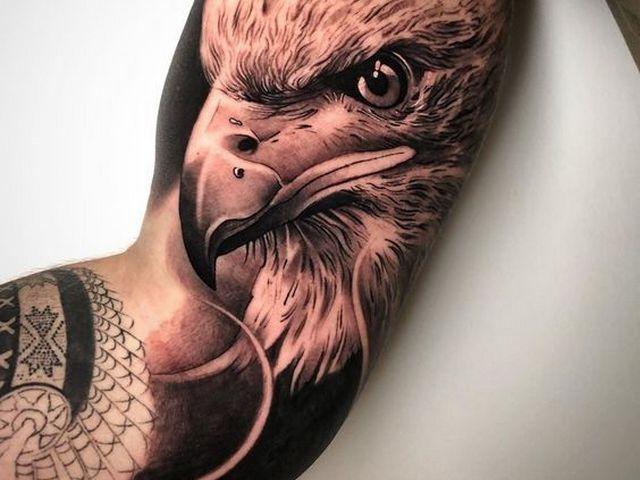 Тату голова орла на бицепсе