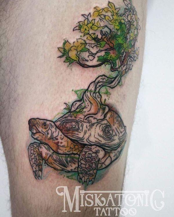 Цветная тату черепаха и дерево на ноге