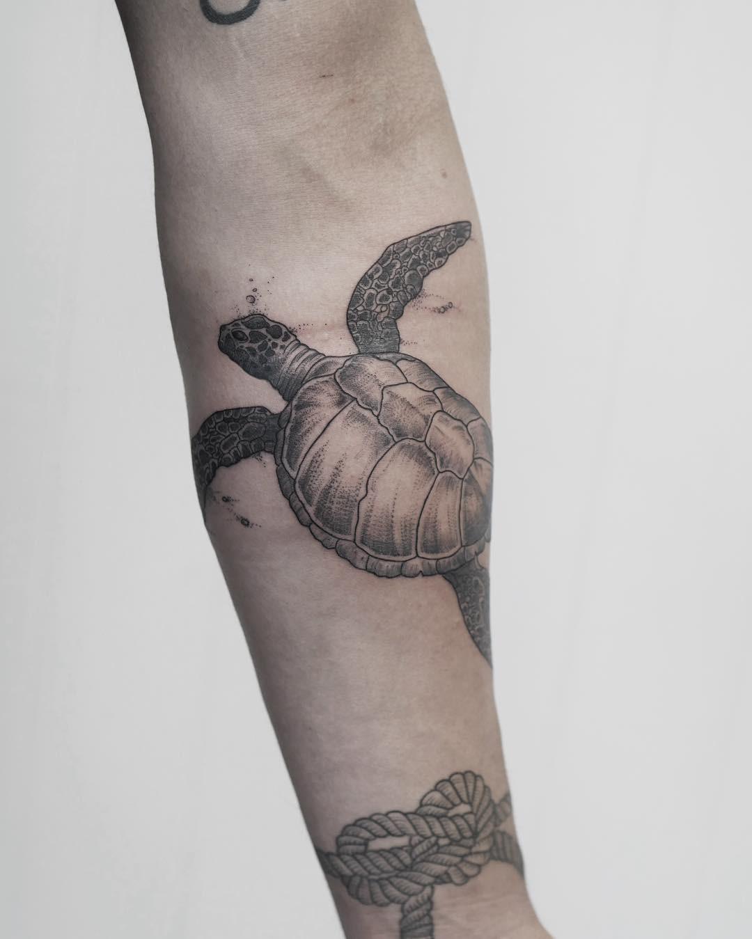 Черепаха и веревочный узел для человека на руке