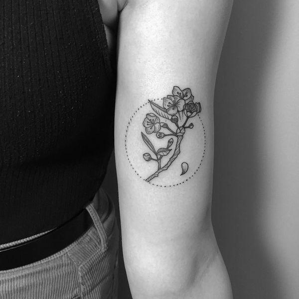 Простая татуировка черной сакуры на руке