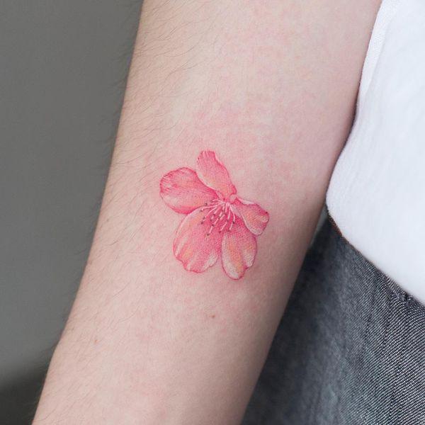 Значительная одиночная татуировка сакуры на предплечье