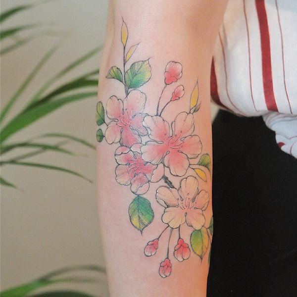 Великолепный красочный дизайн татуировки сакуры на предплечье